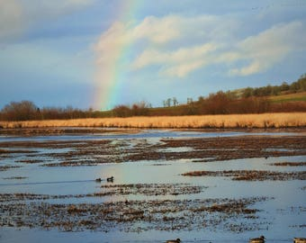 Great reflection of a beautiful rainbow on Baskett Slough.