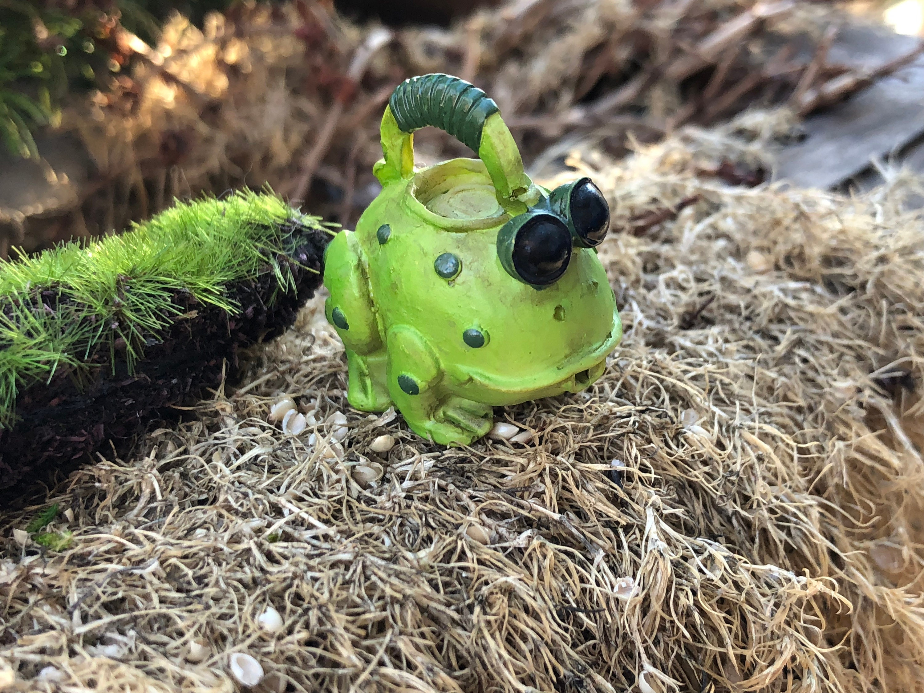 Mini Frog Watering Can, Resin Frog, Fairy Garden Accessory ...