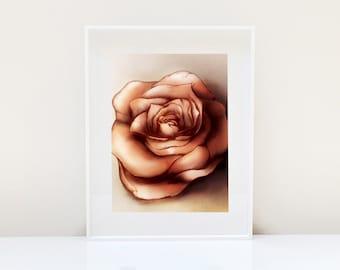 Red Rose Print ( Rose art Original art Valentines day gift Flower illustration Flower print Nature Home decor Home Décor Wall hanging )