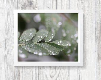 "Digital Download, Zen Decor, Mindful Decor, Yoga Decor, Yoga Art, Mint, Green, Instant JPEG Download, Printable, PDF, ""Drops of Rain"""