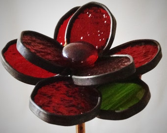 Long Stem Red Rose - Valentine's, Birthday, Anniversary, I Love You!, I Miss You!