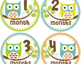 Monthly Baby Boy Stickers, Baby Month Stickers, Monthly Bodysuit Sticker, Monthly Stickers, Milesone Stickers (Brody)