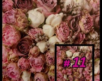 Love n Bliss #11
