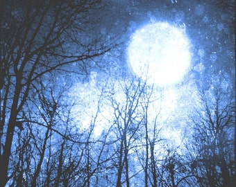 Blue Night Sky Photo, Surreal, Moon Art Print, Tree Photo, Forest, Black, Cosmic, Navy Blue, 5x5 inch Fine Art Print, Into the Midnight