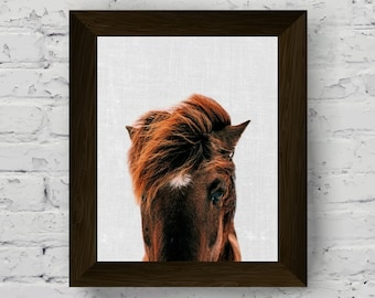 horse photography, animal print, horse wall art, equestrian poster, animal photo, wall art prints, printable artwork, digital download