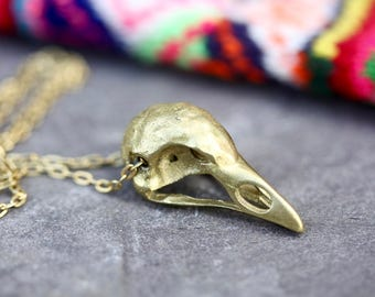 Bird skull necklace skull necklace witch necklace bird necklace nature necklace gold necklace wildlife necklace boho necklace gift for her