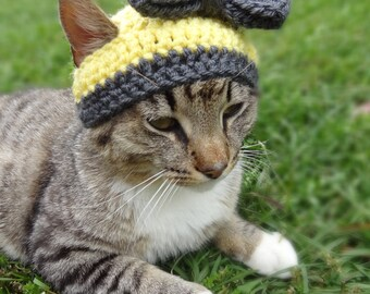 Custom Hat for Cats, Cat Hat, The Sunshine and Pewter Hat for Cats and Small Dogs