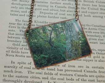 Tree necklace or pendant Tree jewelry photography jewelry mixed media jewelry
