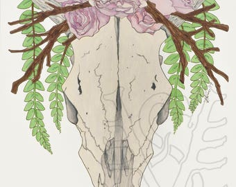 Cow Skull with Roses