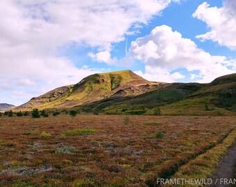 Laugevagur Trail - Iceland - Download