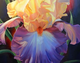 Colorful Iris Flower painting