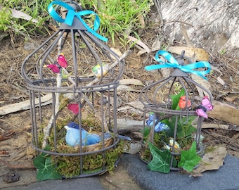 Six and Nine Inch Bird Cage Terrariums