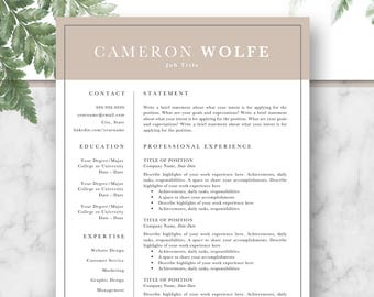 Professional Resume Template, CV, Curriculum Vitae, Template Design, Instant Download For Word, Two-Page Resume, Pink, Cameron