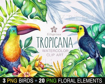 Tropicana WATERCOLOR clipart. 3 PNG Toucan Birds, 20 PNG botanical elements, orchid flowers, tropical leaves, jungle nature. Read how to use