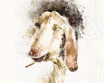 "Martinefa's Original watercolor and Ink - ""Goat"""