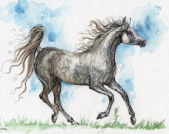 Running gray arabian mare, equine art, horse painting, equestrian,  ink and weatercolor original art