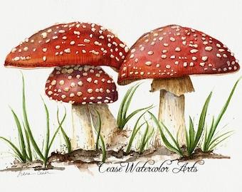 "Red mushrooms ""And Baby Makes Three"" Amanita muscaria - Watercolor giclee 8x10 print"