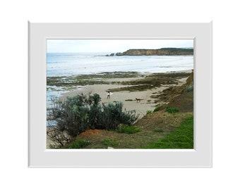 Digital Photo - Torquay Surf Beach 3 - Victoria Australia