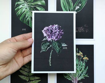 Set of 5 Plants cards. Illustrated Cards. Botanical Cards. Art Postcards. set Botanical Postcards. Watercolor. Scandinavian style. Nordic