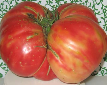 Church Heirloom Tomato Seeds