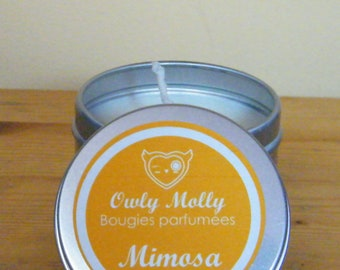 Owly Molly - Mimosa candle