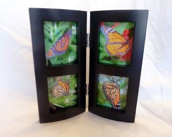Monarch butterfly set - Monarchs ACEO Set Framed - Set of 4 Fine Art Photography Prints