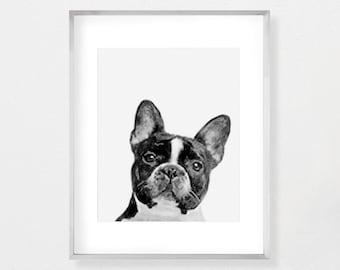 French Bulldog, Black and White, Dog Print, Dog Art, Dog Lovers Gift, Dog Wall Art, Dog Lover Art, Dog Poster, Dog Wall Decor, Dog Painting