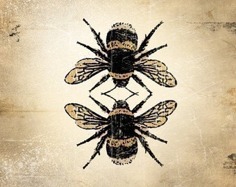 6x6 Insect Print - Bumble Bee