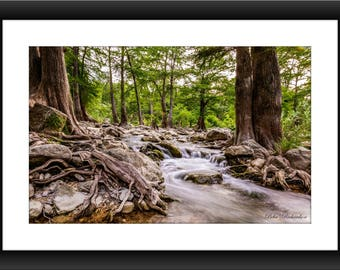 Fine Art Print of Guadalupe River Near Gruene Historic District, New Braunfels, Texas, River, Gruene, Photograph