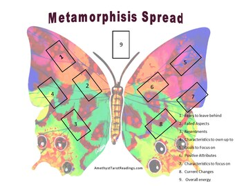 Metamorphisis Tarot Reading