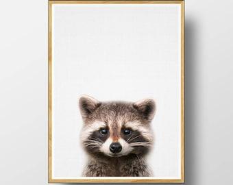 Racoon Print, Baby Animal Prints, Nursery Animal, Nursery Wall Art, Woodlands Nursery, Printable Woodlands, Woodlands Decor, Nursery  Print