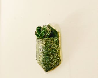 Cactus planter ceramic wall planter pottery plant holder hanging wall planter succulent planter air fern holder cactus planter vertical plan