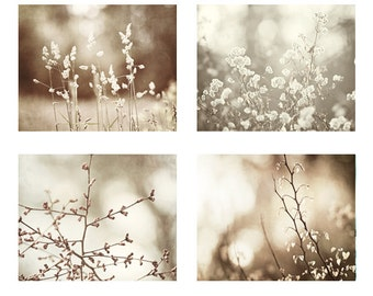 Brown Nature Photography Set, beige tan photography white cream botanical photos rustic wall art rust picture neutral photographs country