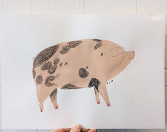 Three (not so little) Pigs A5 Fine Art Prints. Three piggies perfect for your kitchen :)