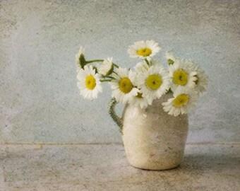Still Life Photography, White Daisy Art,  Vintage Inspired,  Flower Photography, Farmhouse Decor,  Rustic Wall Decor
