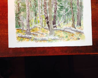 forest watercolor, deep woods watercolor, pine forest painting, watercolor of woods