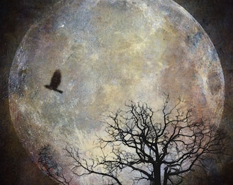full super moon photo, surreal landscape fine art photograph tree birds home decor, night sky blue astrology intuitive spiritual supermoon
