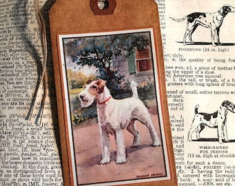 Wire Fox Terrier Tag