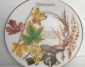 The November Plate by Caverswall China Based on Edith Holden Book Designed by John Ball.