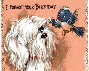 Vintage Original unused Greeting card Happy Birthday Forgot Your Birthday