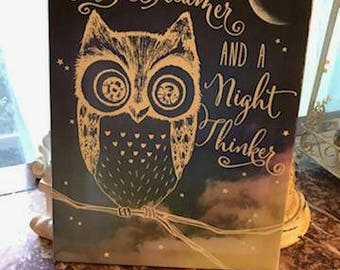 Im a day dreamer night thinker owl picture