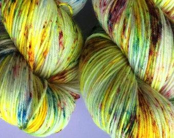 Spring Forward hand dyed yarn