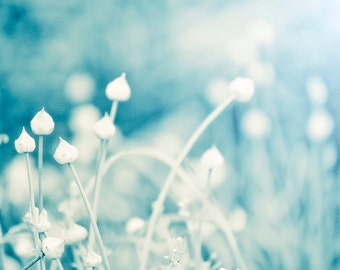 Blue Nature Photo, Floral Decor, Romantic Wall Art, Dreamy Photography, Landscape, Flowers, Botanical, Cottage Decor, Blue and White