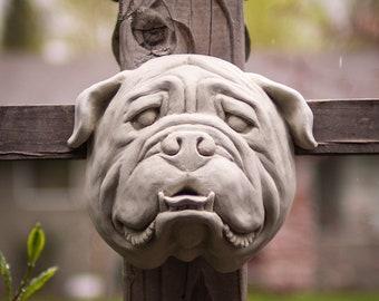 English Bulldog in Cement