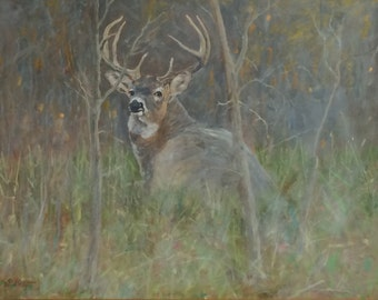 Foggy Morning Whitetail