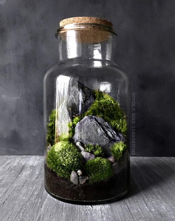 Indoor Moss Garden Multilevel Recycled Glass Terrarium