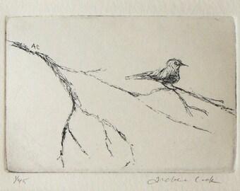 original etching of a bird on a branch