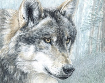 Wolf Art INTENT EYES print by Carla Kurt Signed 11 x 14, top selling artist, best selling