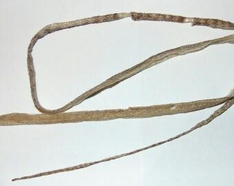 Complete Snake Shed Skin - Wamena Scrub Python