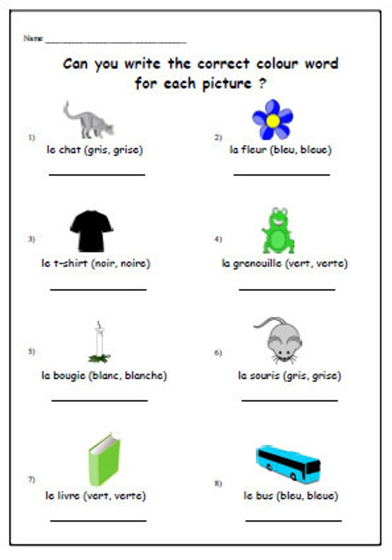 Colour Words French Worksheet With Masculine Feminine